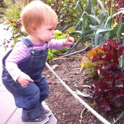 Winnie checks out the demo garden at the Brooklyn Botanic