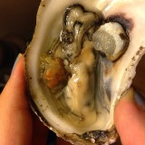 Local oysters + local oyster crab