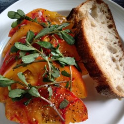 Foraged purslane + greenmarket tomatoes